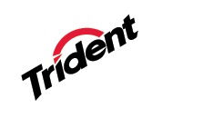 Trident in 'Best Brand of Bubble Gum': ranks ?