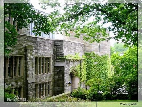 Princeton University in 'best 10 university in the world ': ranks ?
